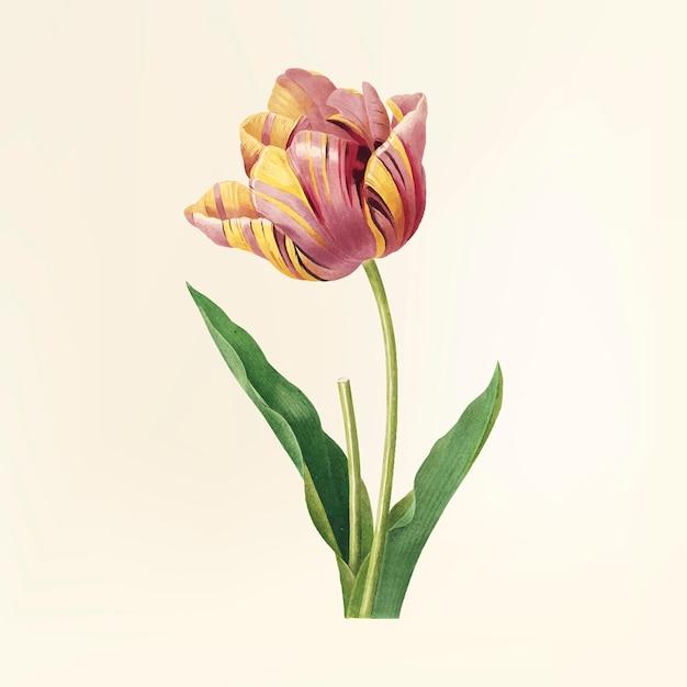 Flor vintage ilustração Vetor grátis