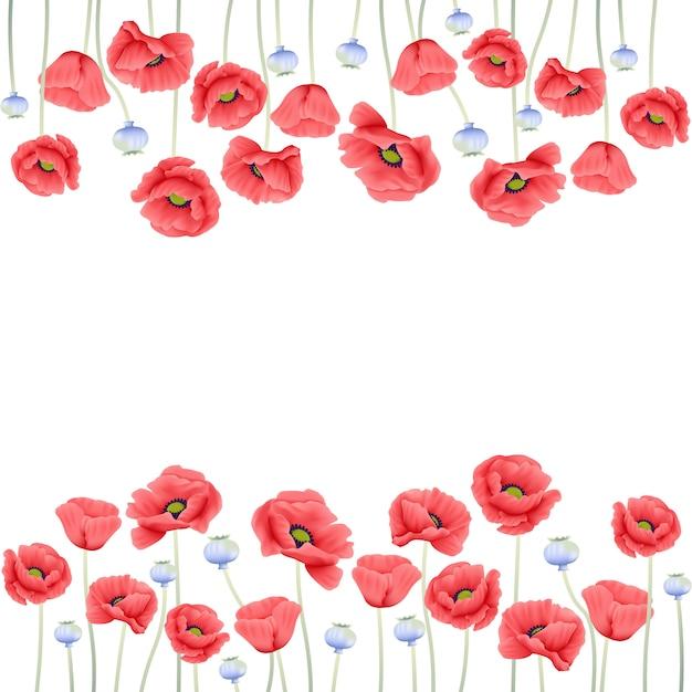 Floral, fundo, com, papoula, flor Vetor Premium
