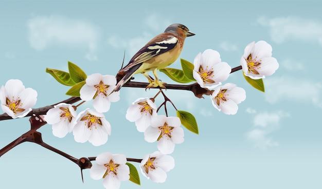 Flores de cerejeira e ilustração de pássaro Vetor Premium