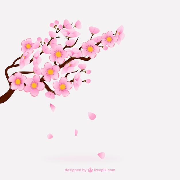 Flores De Cerejeira Rosa Baixar Vetores Grátis
