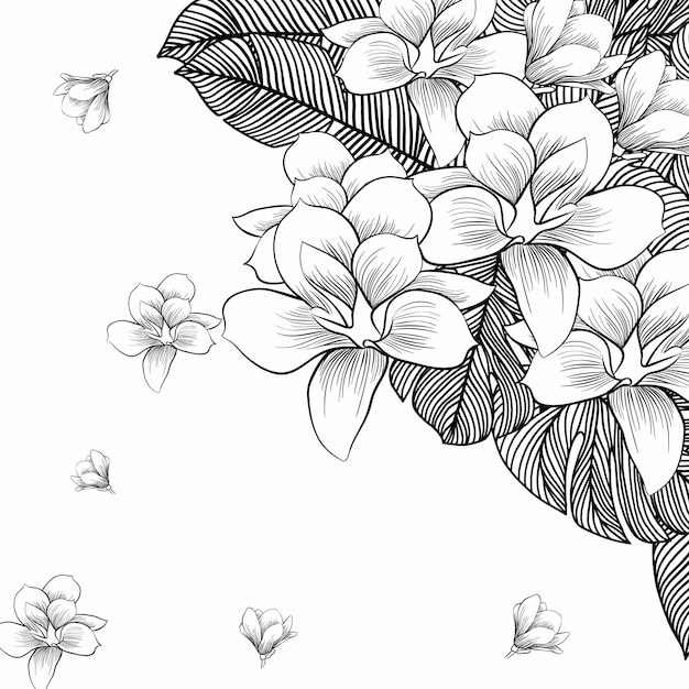 Flores Desenhar Fokur Blocorganization Org