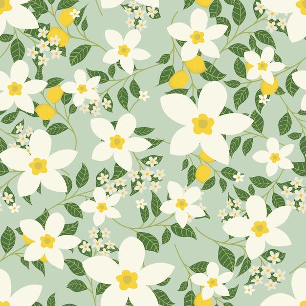 Flores de jasmim e limão de fundo Vetor Premium