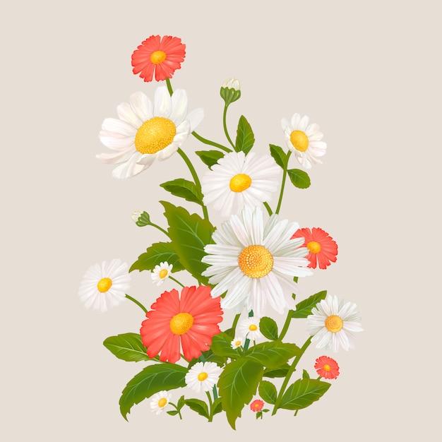 Flores de margarida mistas Vetor grátis