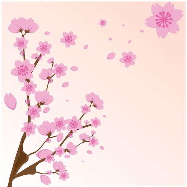 Flores de sakura rosa sobre fundo rosa. Vetor Premium