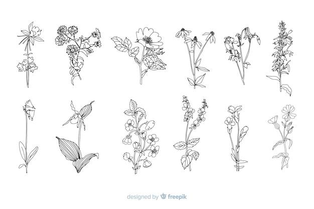 Flores desenhadas mão realista Vetor grátis