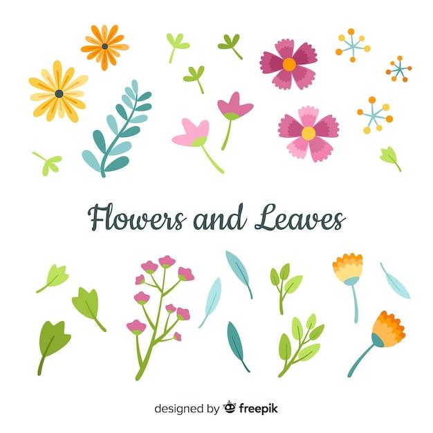 Flores e folhas collectio Vetor grátis