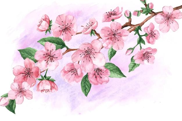 Flores e folhas em aquarela de sakura Vetor grátis