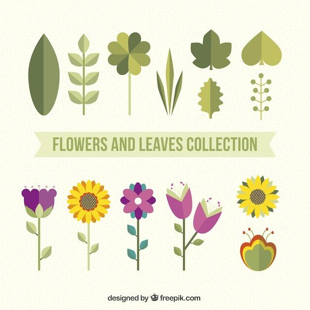 Flores e folhas embalar em estilo plano Vetor grátis
