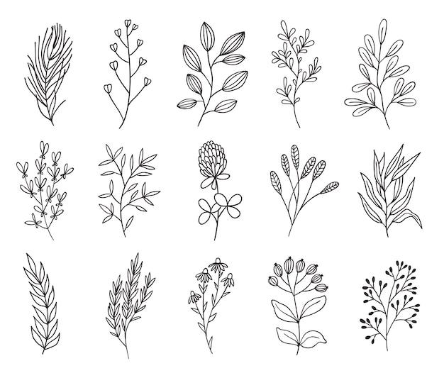 Flores e galhos minimalistas. ervas de arte em linha. conjunto de ícone de destaque de mão desenhada. Vetor Premium