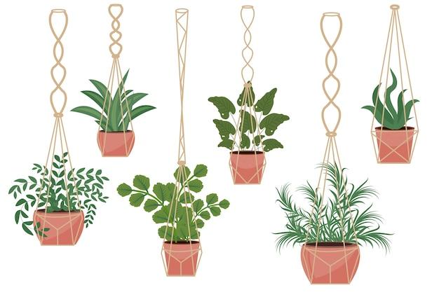 Flores em vaso em vasos de macramê, estilo escandinavo moderno, decoração de interiores. conjunto de plantas suspensas. ilustração. Vetor Premium