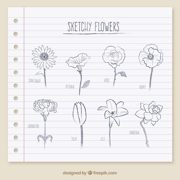 Flores esboçado Vetor grátis