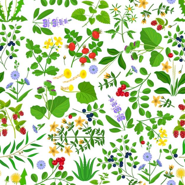 Flores silvestres ervas e bagas padrão sem emenda. Vetor Premium