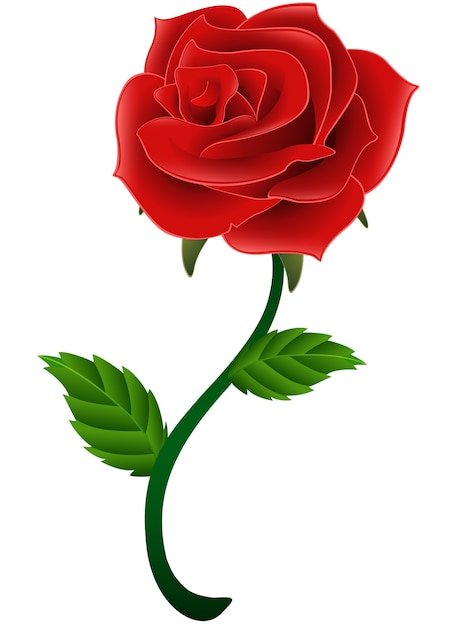 |Rosa Flor Vermelha