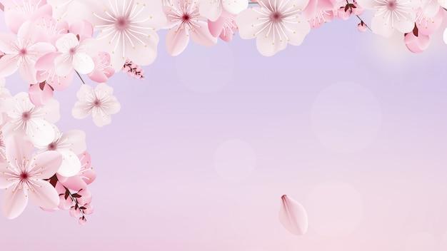 Florescendo luz rosa sakura flores Vetor Premium