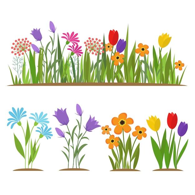 Floresta da mola adiantada e flores do jardim isoladas no grupo do branco Vetor Premium