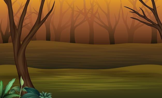 Floresta de halloween na tarde e enevoado Vetor Premium