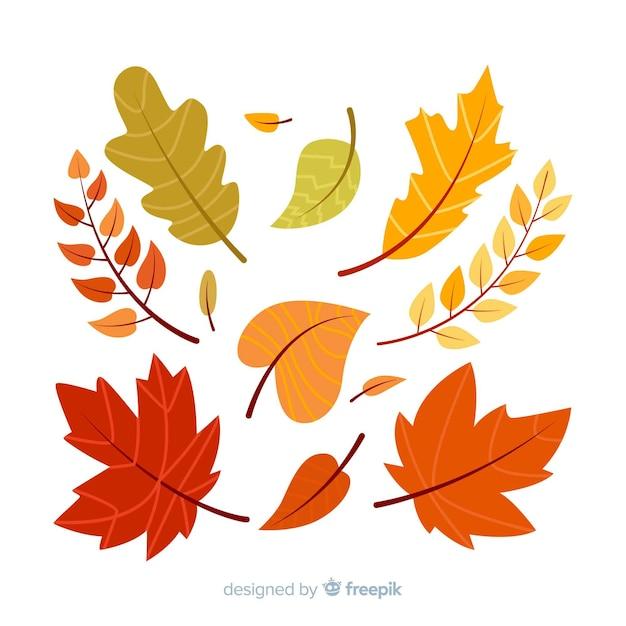 Floresta de outono desenhada mão deixa a coleção Vetor Premium