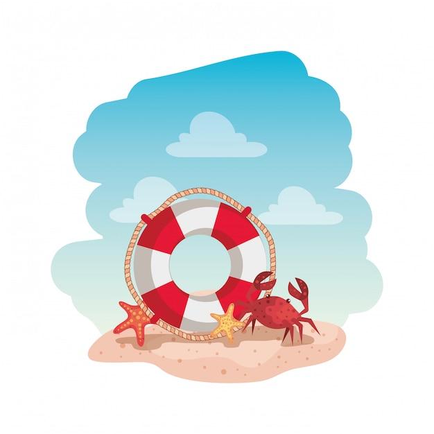 Flutuar marinho com caranguejo e estrela do mar Vetor Premium