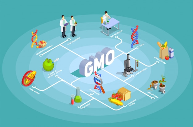 Fluxograma isométrico de organismos geneticamente modificados Vetor grátis