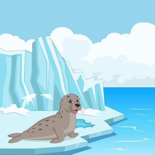 Foca de desenho animado flutuando no gelo Vetor Premium