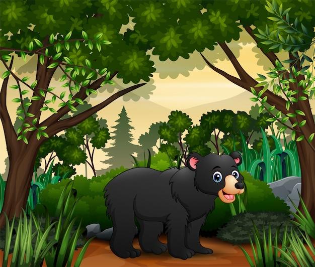 Fofo um urso andando na selva Vetor Premium