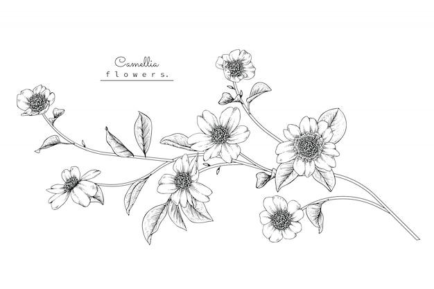Folha de camélia e desenhos de flores Vetor Premium