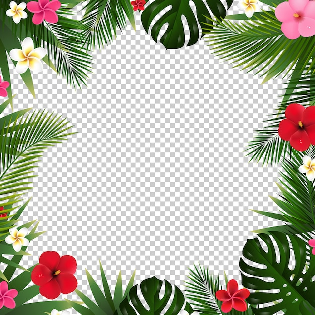 Folha de palmeira e flores de fundo transparente Vetor Premium
