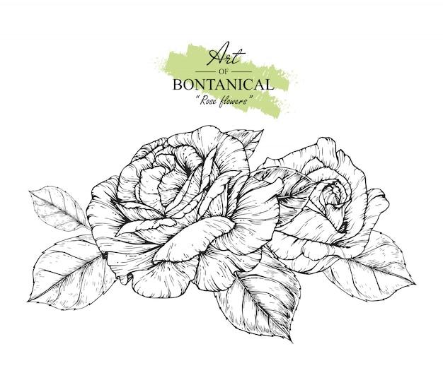 Folha De Rosa E Desenhos De Flores Vetor Premium