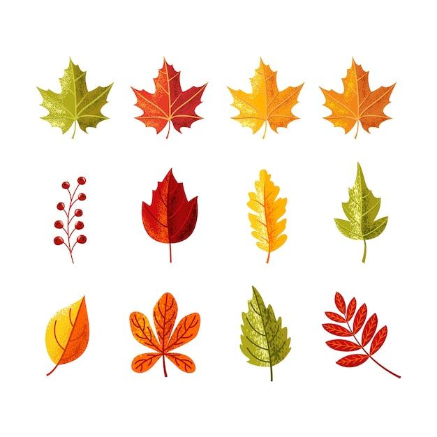 Folhas coloridas com sombra de grãos para a temporada de outono Vetor Premium