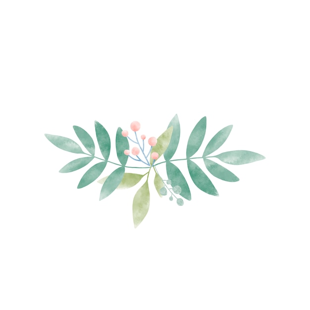 Folhas de aquarela com vetor de bagas Vetor grátis