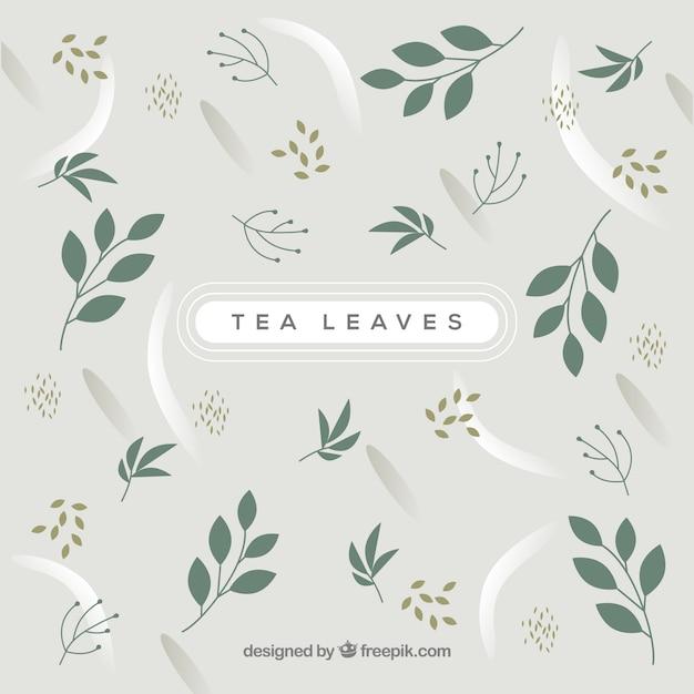 Folhas de chá Vetor grátis