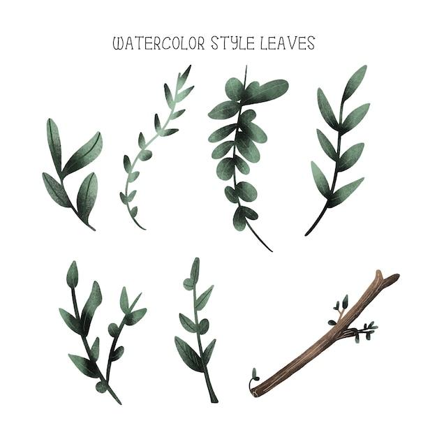 Folhas de estilo aquarela, coleção de mão desenhada Vetor Premium