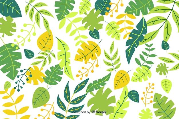 Folhas de fundo Vetor grátis