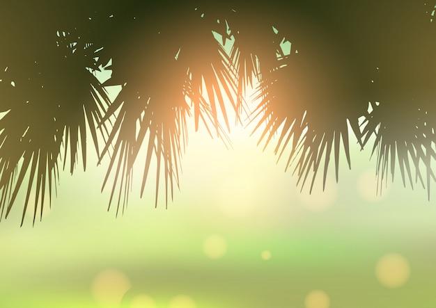 Folhas de palmeira contra luz de fundo bokeh Vetor grátis