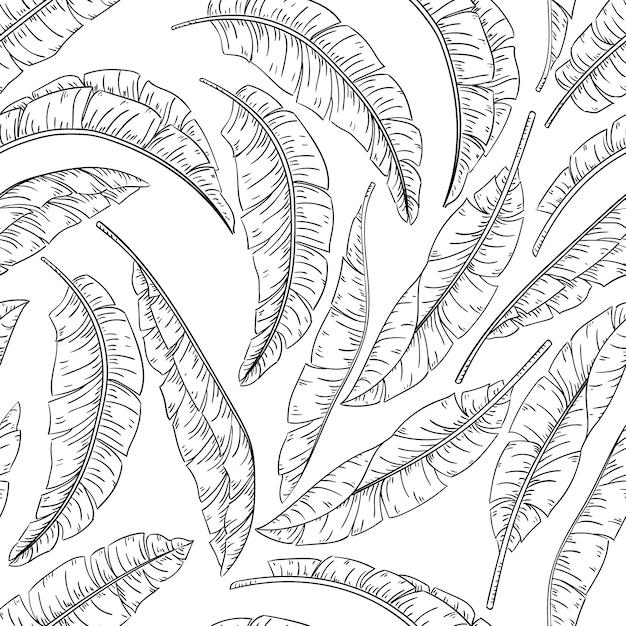 Folhas de palmeira tropical esboçar padrão sem emenda, banana da selva Vetor Premium