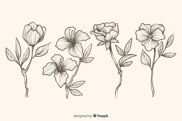 Folhas e flores desenhadas mão realista Vetor grátis