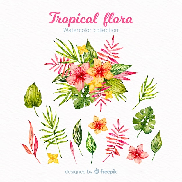 Folhas e flores tropicais Vetor grátis