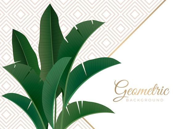 Folhas tropicais com fundo geométrico Vetor Premium