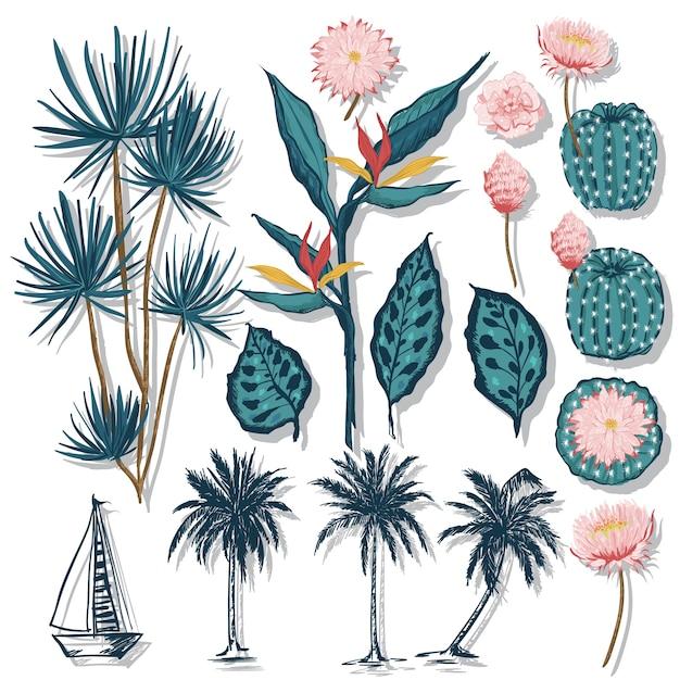 Folhas tropicais coqueiros e flor de cacto Vetor Premium