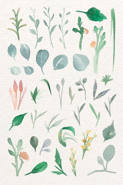 Folhas verdes em aquarela Vetor grátis