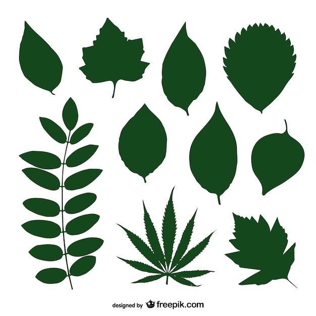 Folhas Verdes Vector Coleção Silhueta