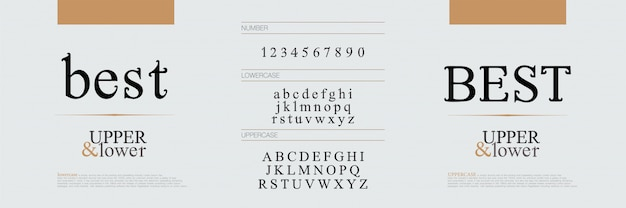 Fontes de letras do alfabeto elegante Vetor Premium