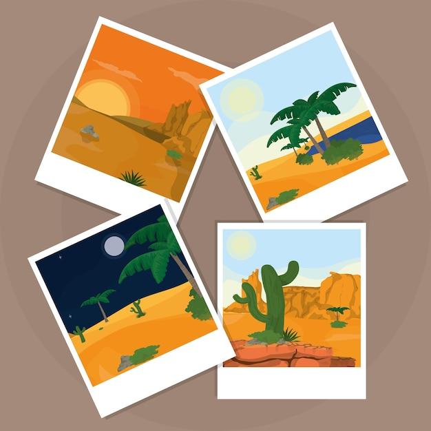 Fotos do deserto sobre a placa de cortiça Vetor Premium