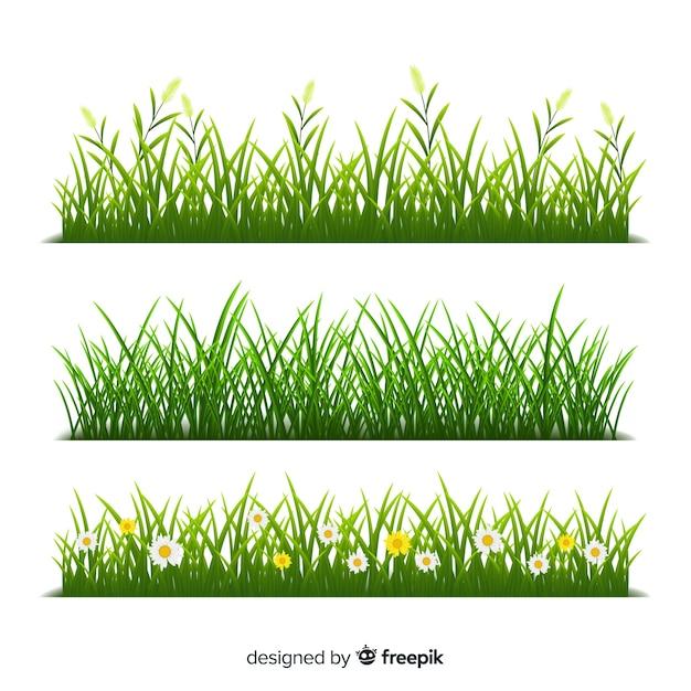 Fronteira de estilo realista de grama Vetor grátis
