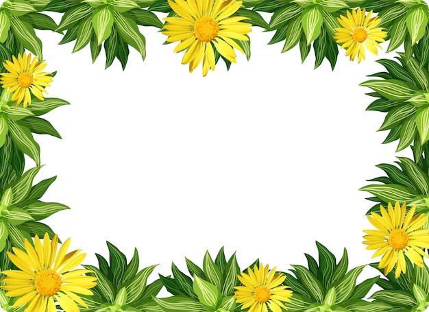 Fronteira de flor margarida amarela Vetor grátis