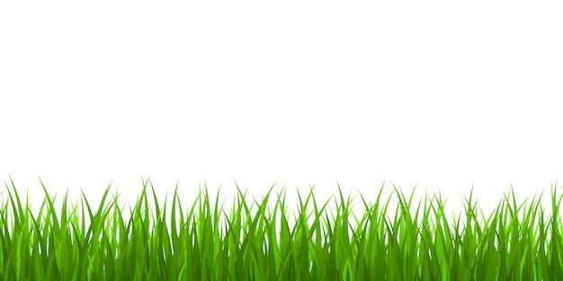 Fronteira de grama verde fresca Vetor Premium