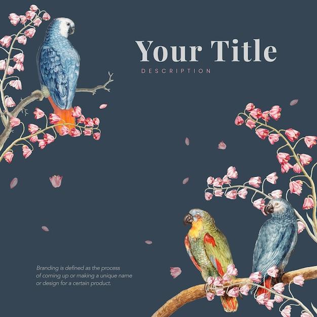 Fronteira de maquete de papagaios Vetor grátis