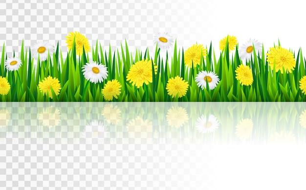 Fronteira sem costura com grama e flores Vetor Premium