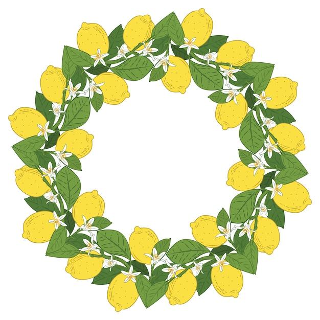 Frutas cítricas tropicais limão com moldura redonda de flores Vetor Premium