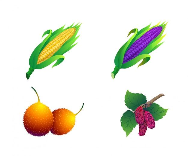 Frutas contêm milho Vetor Premium